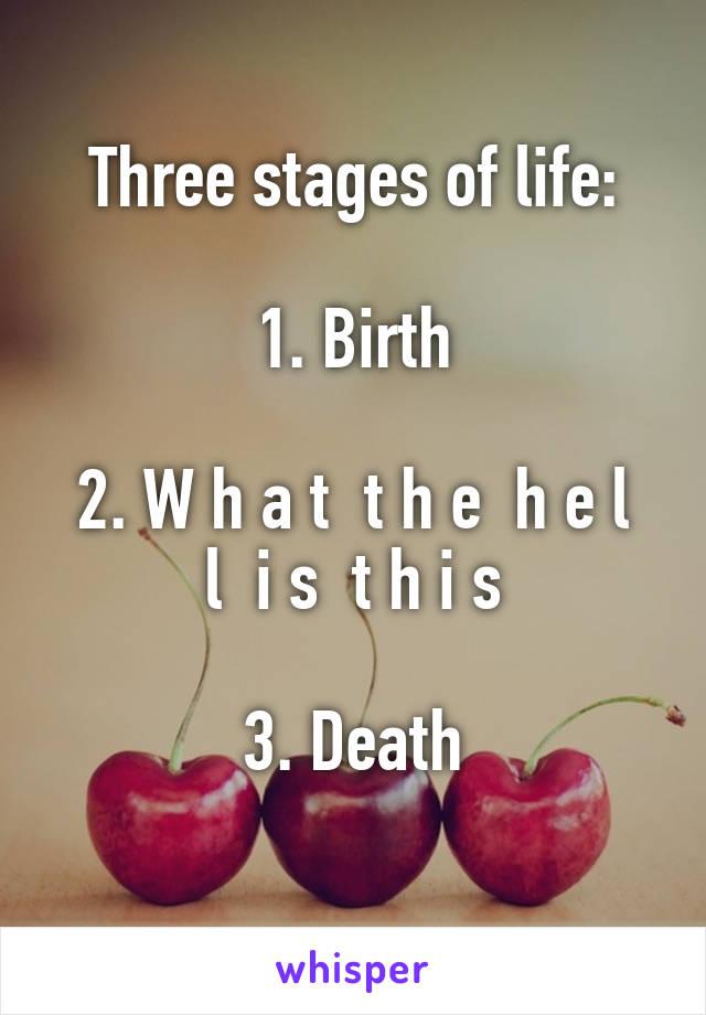 Three stages of life:  1. Birth  2. W h a t  t h e  h e l l  i s  t h i s  3. Death