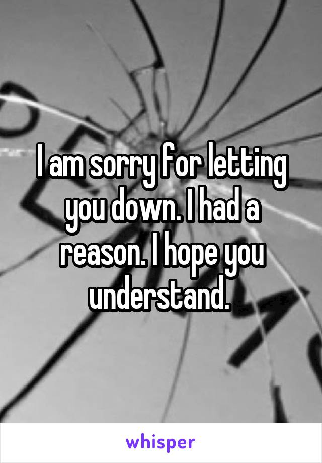 I am sorry for letting you down. I had a reason. I hope you understand.