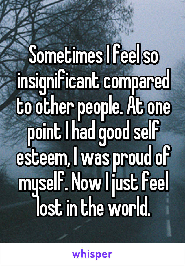 Sometimes I feel so insignificant compared to other people. At one point I had good self esteem, I was proud of myself. Now I just feel lost in the world.