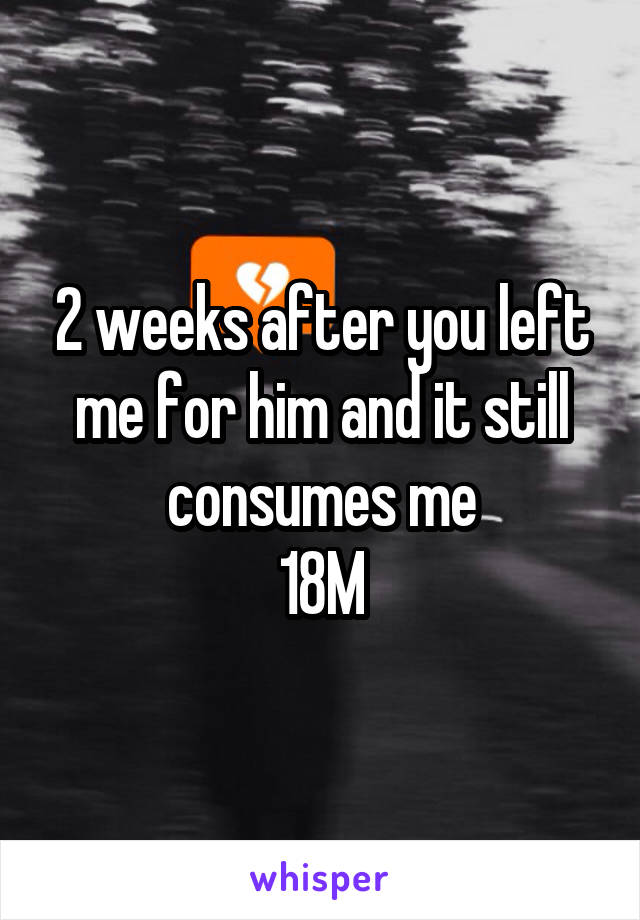 2 weeks after you left me for him and it still consumes me 18M