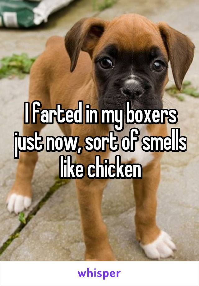 I farted in my boxers just now, sort of smells like chicken