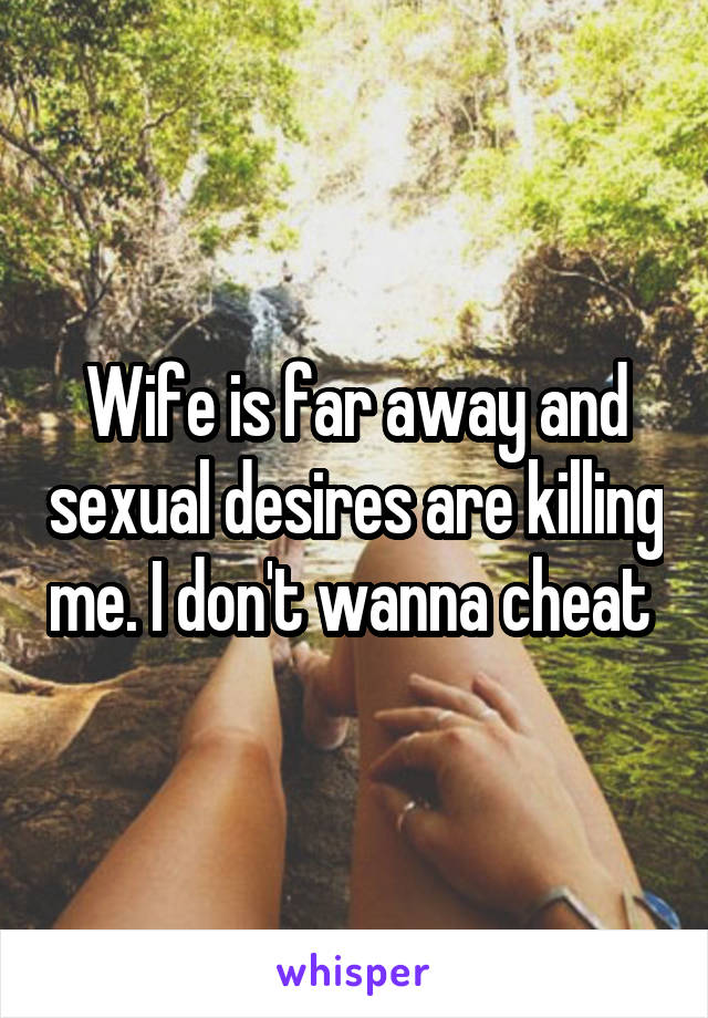 Wife is far away and sexual desires are killing me. I don't wanna cheat