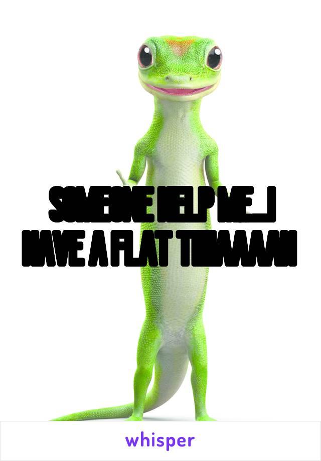 SOMEONE HELP ME...I HAVE A FLAT TIIIIAAAAH