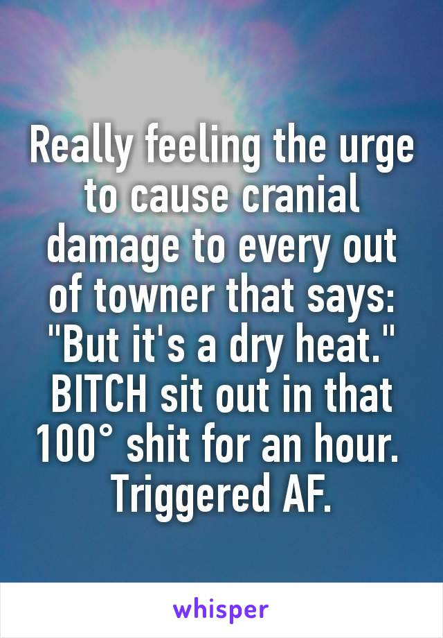 """Really feeling the urge to cause cranial damage to every out of towner that says: """"But it's a dry heat."""" BITCH sit out in that 100° shit for an hour.  Triggered AF."""