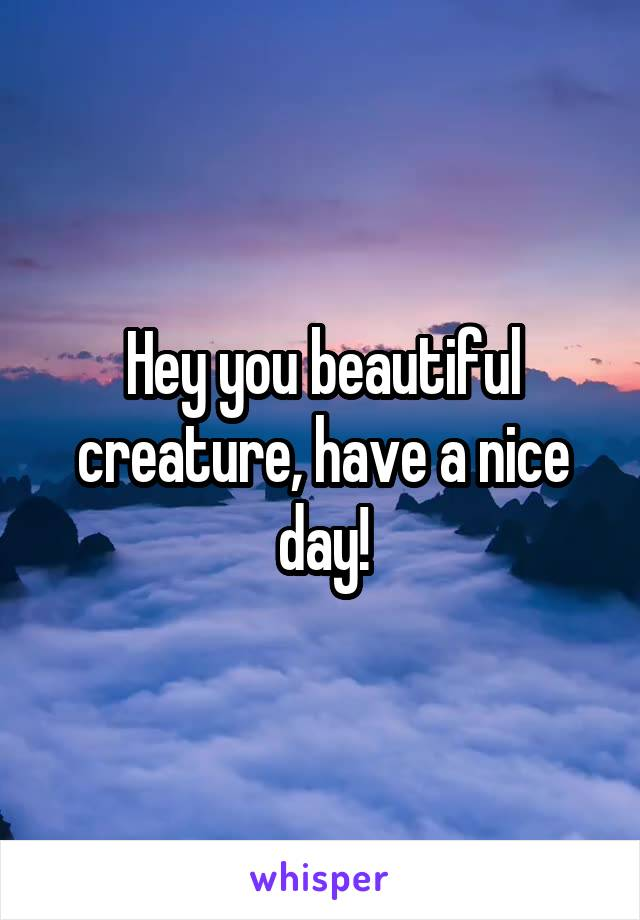 Hey you beautiful creature, have a nice day!