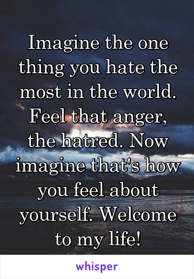 Imagine the one thing you hate the most in the world. Feel that anger, the hatred. Now imagine that's how you feel about yourself. Welcome to my life!