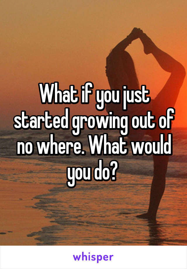 What if you just started growing out of no where. What would you do?