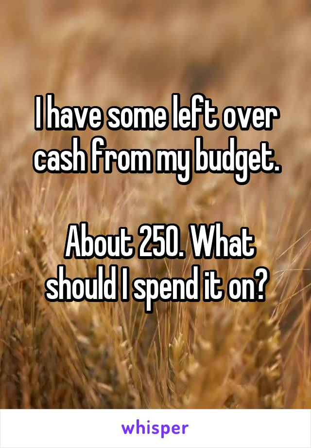 I have some left over cash from my budget.   About 250. What should I spend it on?