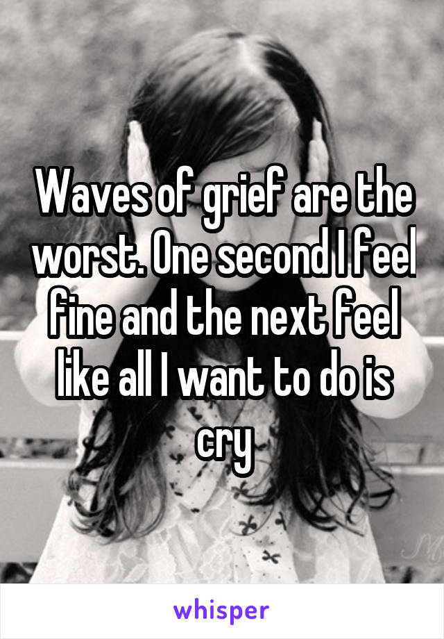 Waves of grief are the worst. One second I feel fine and the next feel like all I want to do is cry