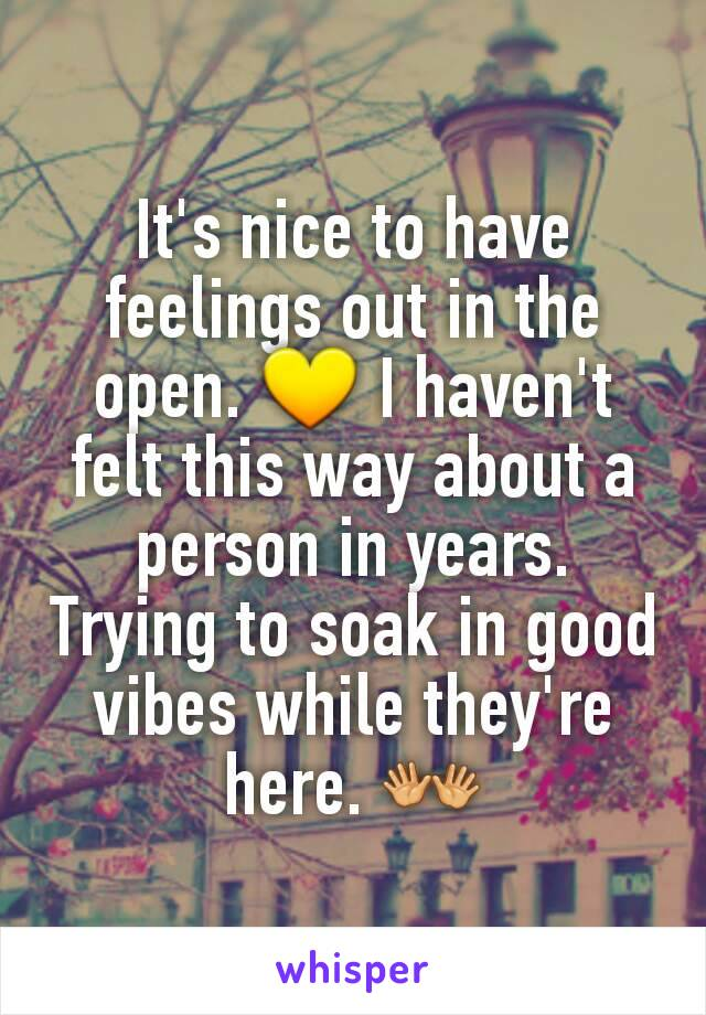 It's nice to have feelings out in the open. 💛 I haven't felt this way about a person in years. Trying to soak in good vibes while they're here. 👐