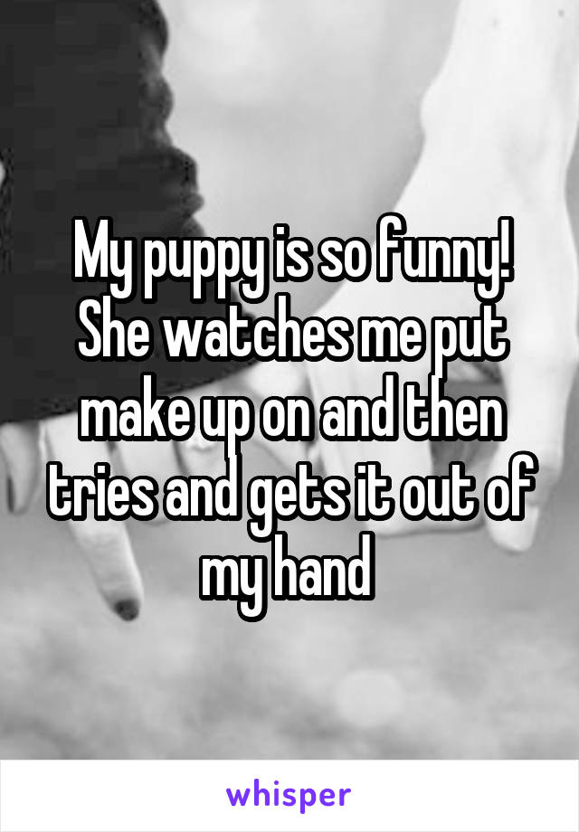 My puppy is so funny! She watches me put make up on and then tries and gets it out of my hand