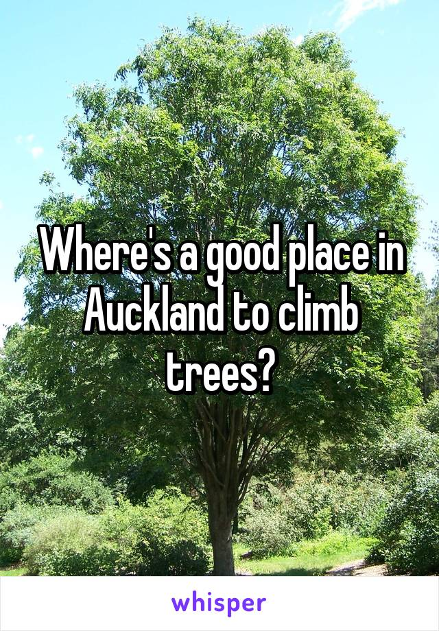 Where's a good place in Auckland to climb trees?