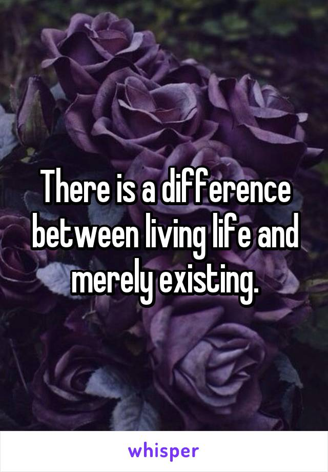 There is a difference between living life and merely existing.