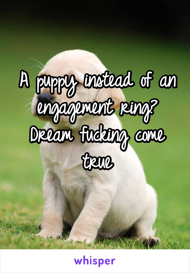 A puppy instead of an engagement ring? Dream fucking come true