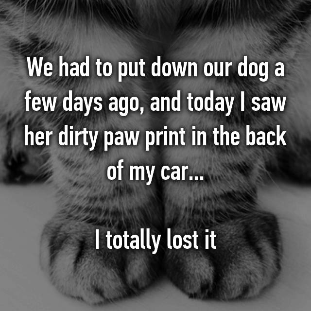 We had to put down our dog a few days ago, and today I saw her dirty paw print in the back of my car...  I totally lost it 😪