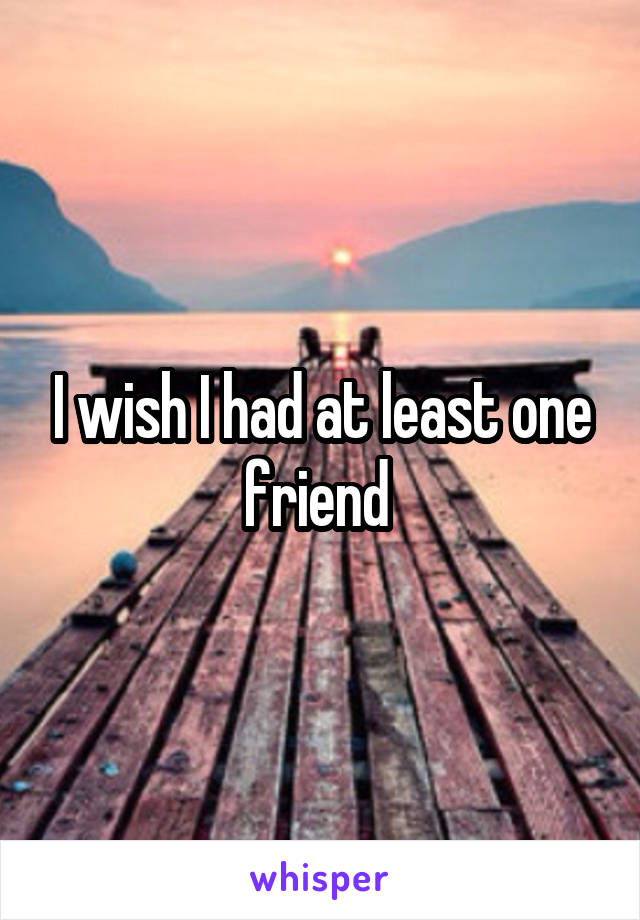 I wish I had at least one friend