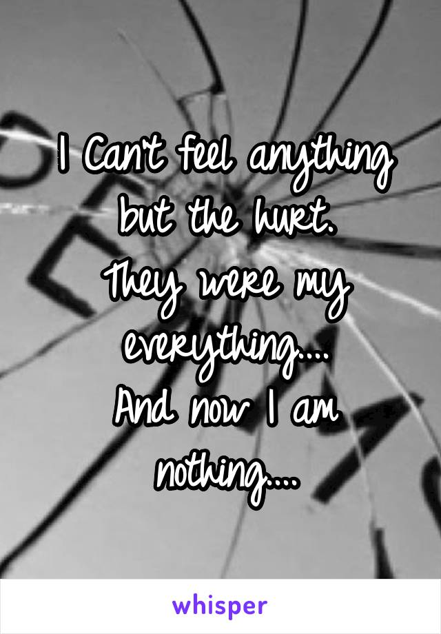 I Can't feel anything but the hurt. They were my everything.... And now I am nothing....