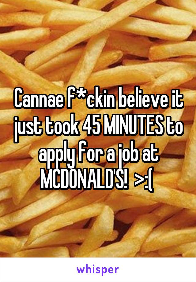 Cannae f*ckin believe it just took 45 MINUTES to apply for a job at MCDONALD'S!  >:(