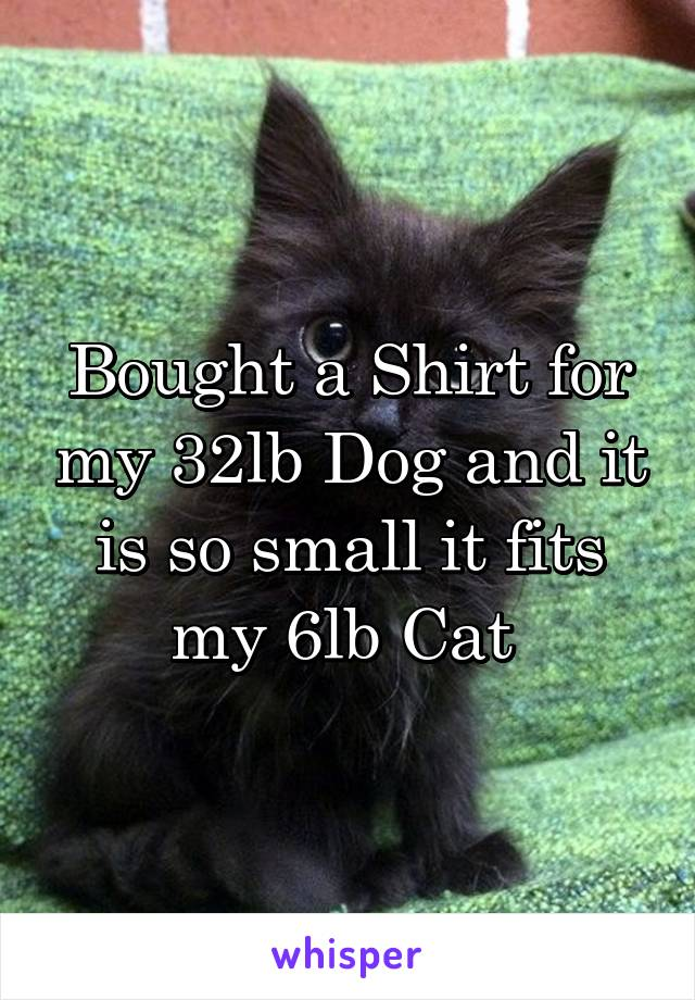 Bought a Shirt for my 32lb Dog and it is so small it fits my 6lb Cat