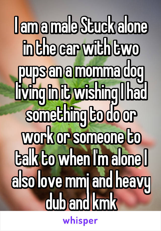 I am a male Stuck alone in the car with two pups an a momma dog living in it wishing I had something to do or work or someone to talk to when I'm alone I also love mmj and heavy dub and kmk
