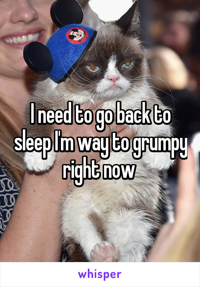 I need to go back to sleep I'm way to grumpy right now