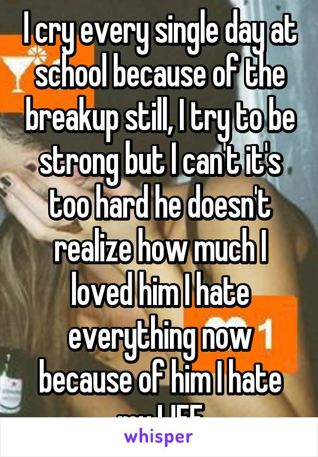 I cry every single day at school because of the breakup still, I try to be strong but I can't it's too hard he doesn't realize how much I loved him I hate everything now because of him I hate my LIFE