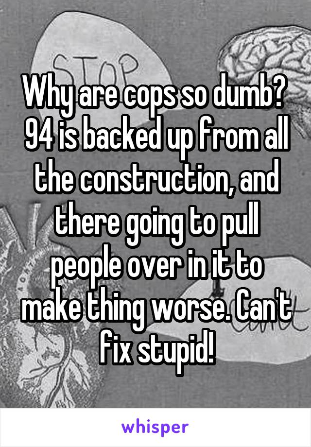 Why are cops so dumb?  94 is backed up from all the construction, and there going to pull people over in it to make thing worse. Can't fix stupid!