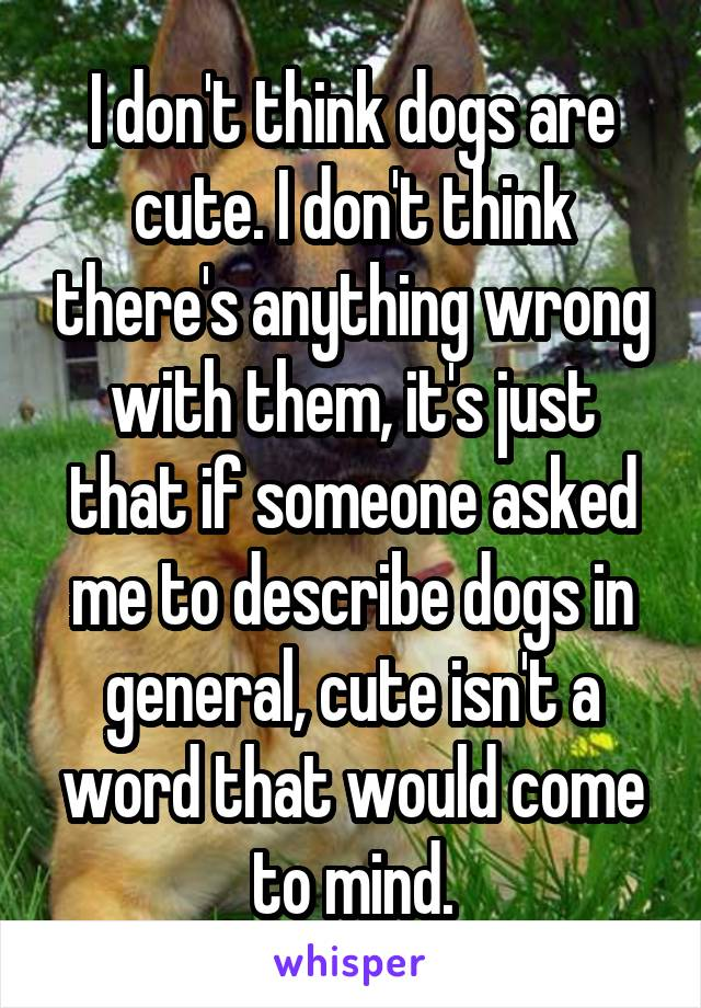 I don't think dogs are cute. I don't think there's anything wrong with them, it's just that if someone asked me to describe dogs in general, cute isn't a word that would come to mind.