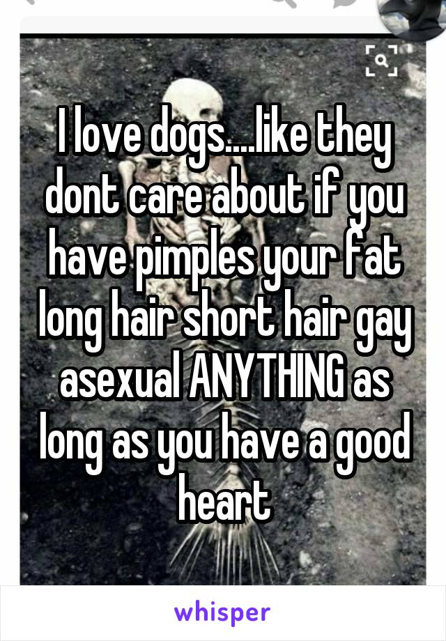 I love dogs....like they dont care about if you have pimples your fat long hair short hair gay asexual ANYTHING as long as you have a good heart