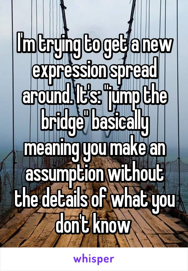 """I'm trying to get a new expression spread around. It's: """"jump the bridge"""" basically meaning you make an assumption without the details of what you don't know"""