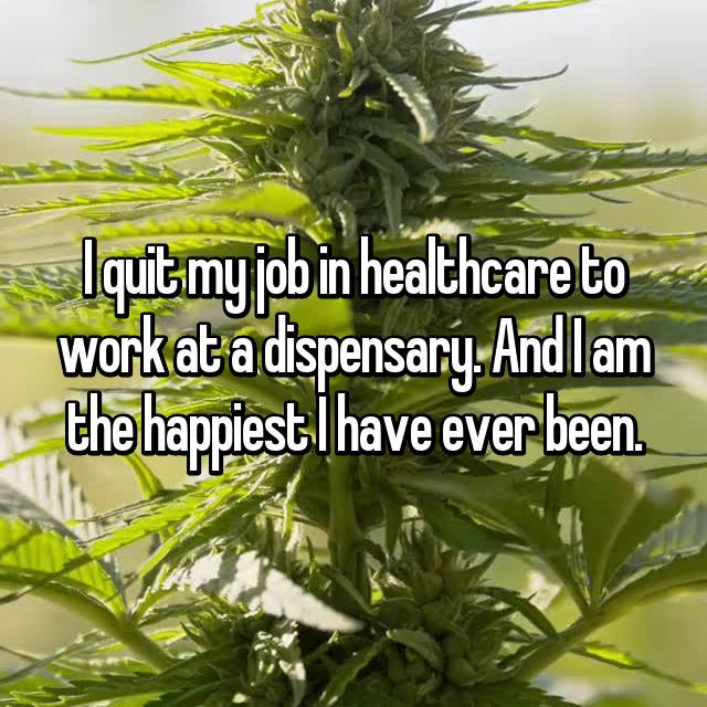 I quit my job in healthcare to work at a dispensary. And I am the happiest I have ever been.