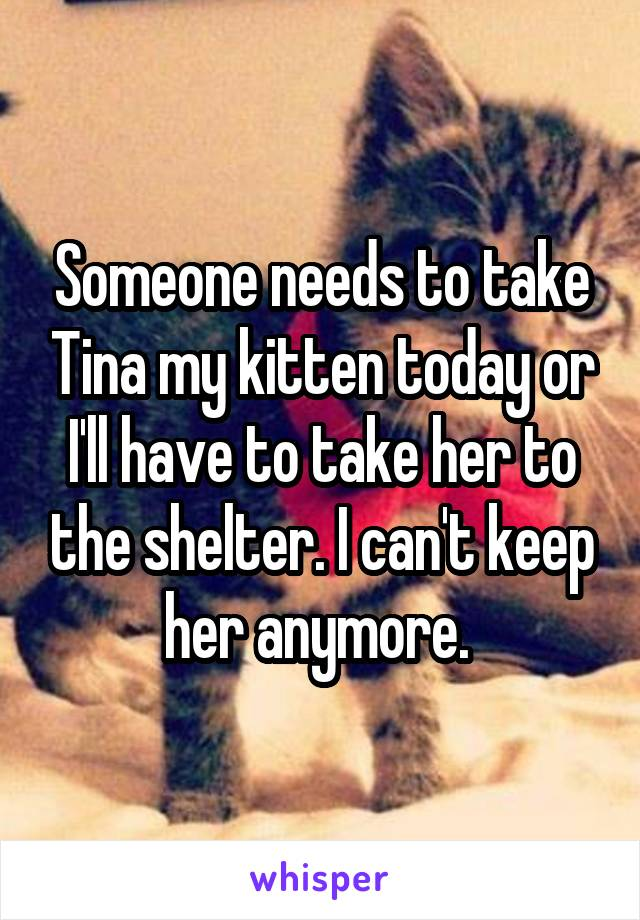 Someone needs to take Tina my kitten today or I'll have to take her to the shelter. I can't keep her anymore.