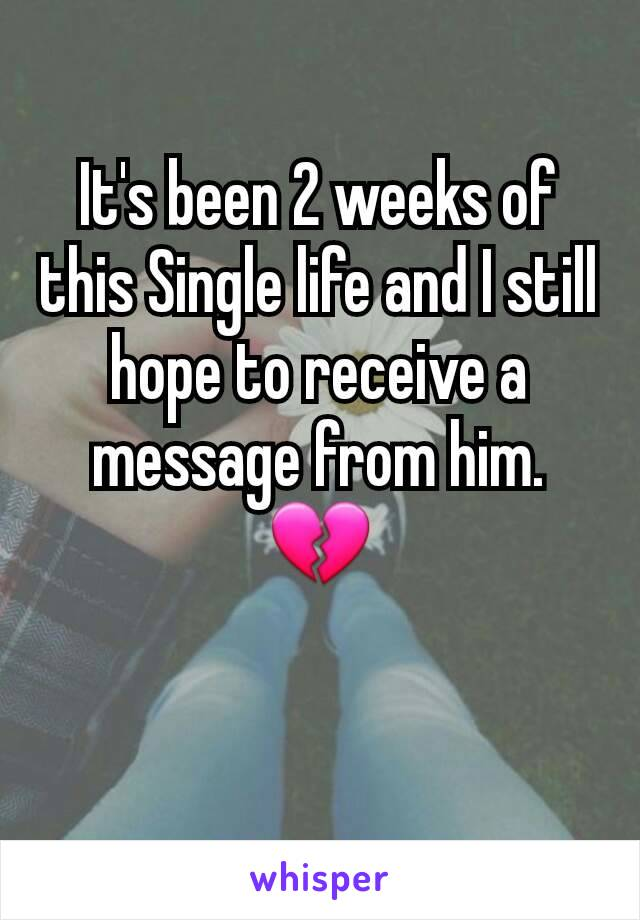 It's been 2 weeks of this Single life and I still hope to receive a message from him. 💔