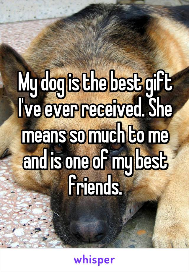 My dog is the best gift I've ever received. She means so much to me and is one of my best friends.