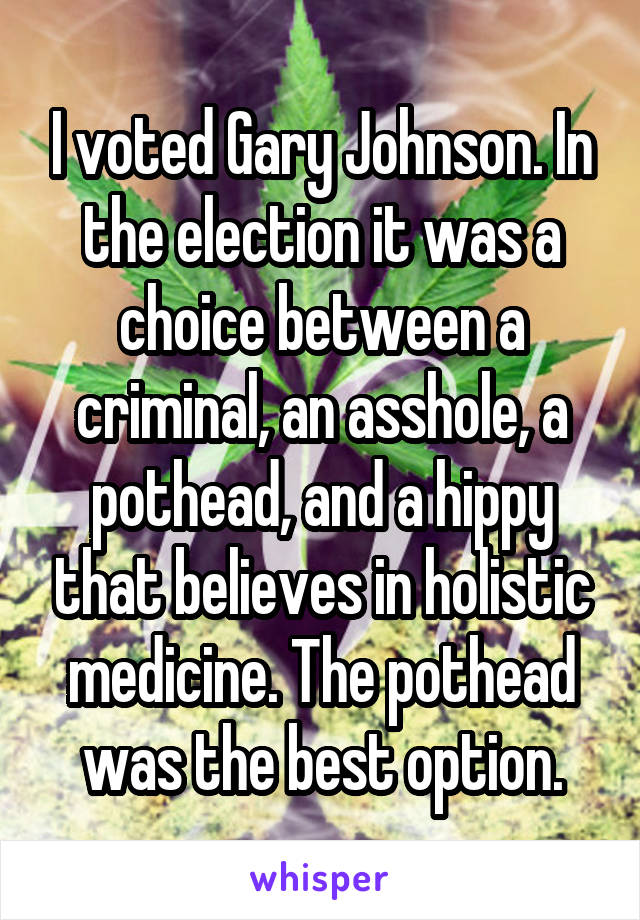 I voted Gary Johnson. In the election it was a choice between a criminal, an asshole, a pothead, and a hippy that believes in holistic medicine. The pothead was the best option.