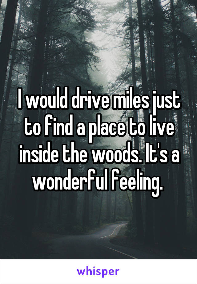 I would drive miles just to find a place to live inside the woods. It's a wonderful feeling.