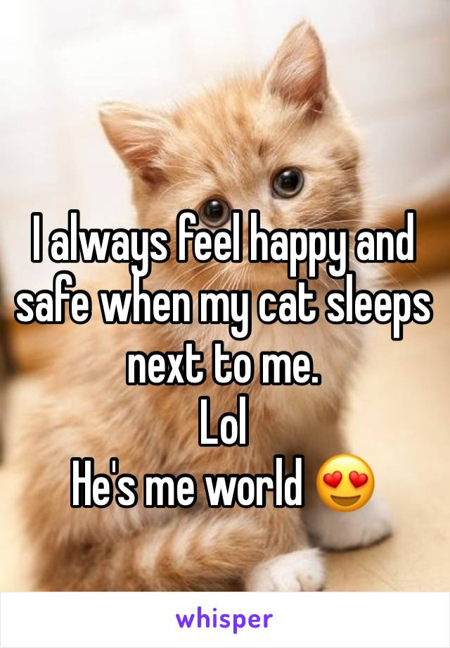 I always feel happy and safe when my cat sleeps next to me.  Lol He's me world 😍