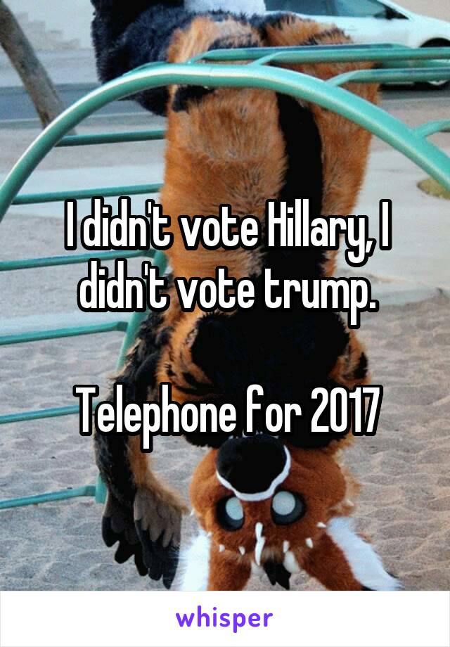 I didn't vote Hillary, I didn't vote trump.  Telephone for 2017