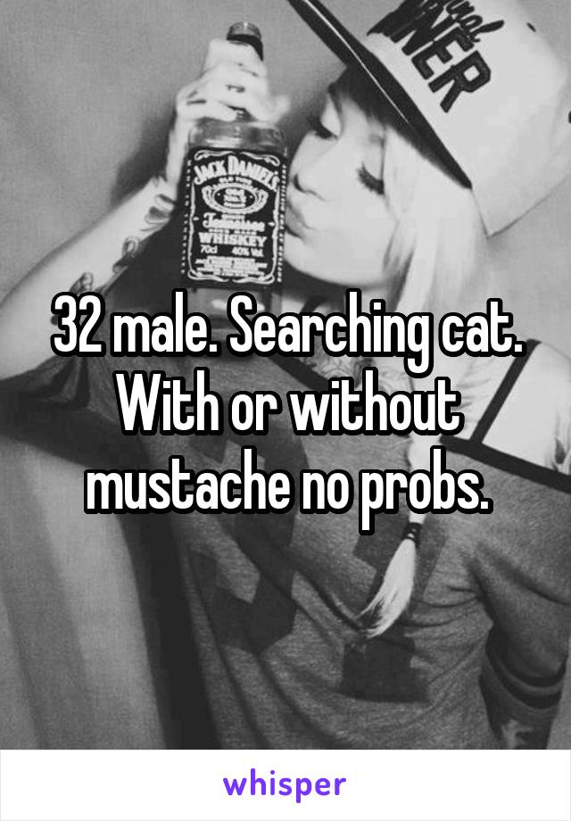 32 male. Searching cat. With or without mustache no probs.