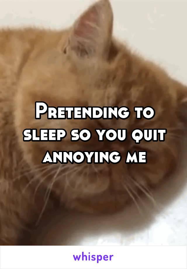 Pretending to sleep so you quit annoying me