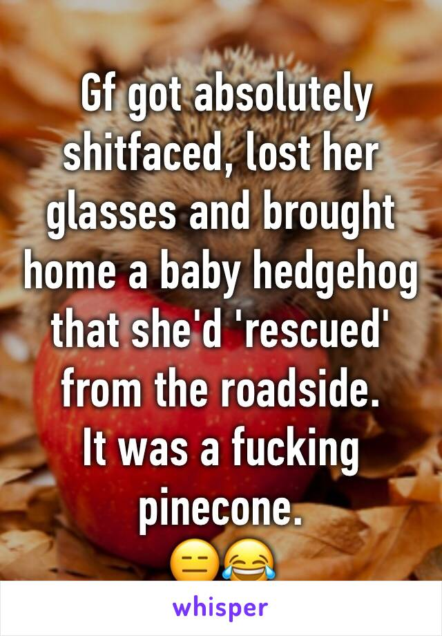 Gf got absolutely shitfaced, lost her glasses and brought home a baby hedgehog that she'd 'rescued' from the roadside.  It was a fucking pinecone.  😑😂