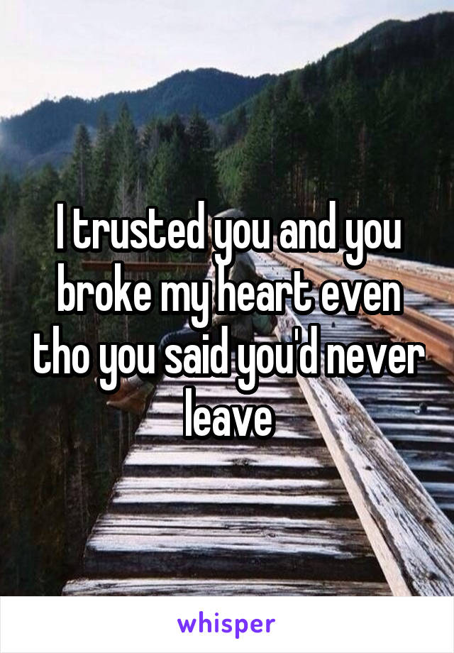 I trusted you and you broke my heart even tho you said you'd never leave