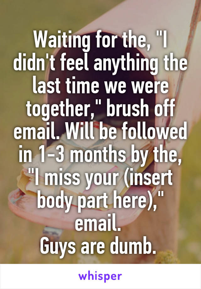 """Waiting for the, """"I didn't feel anything the last time we were together,"""" brush off email. Will be followed in 1-3 months by the, """"I miss your (insert body part here),"""" email.  Guys are dumb."""