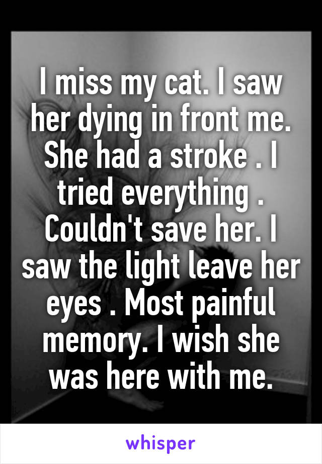I miss my cat. I saw her dying in front me. She had a stroke . I tried everything . Couldn't save her. I saw the light leave her eyes . Most painful memory. I wish she was here with me.