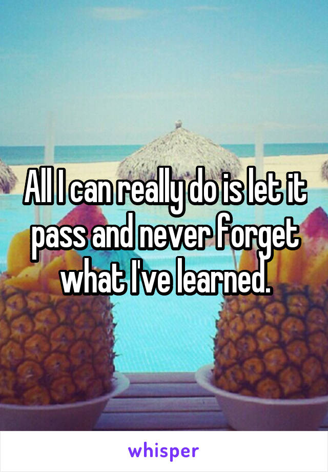 All I can really do is let it pass and never forget what I've learned.