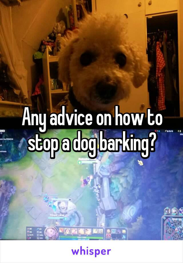 Any advice on how to stop a dog barking?