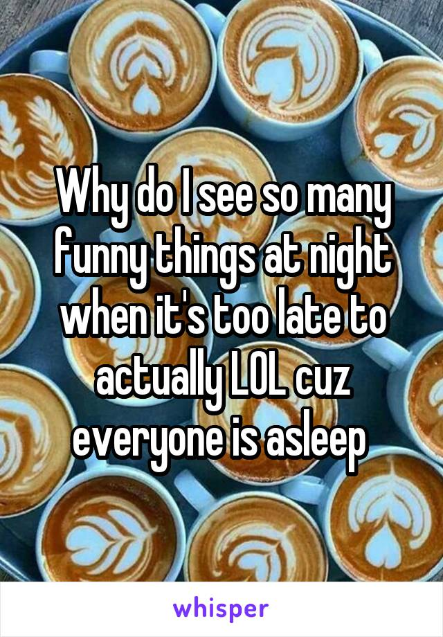 Why do I see so many funny things at night when it's too late to actually LOL cuz everyone is asleep