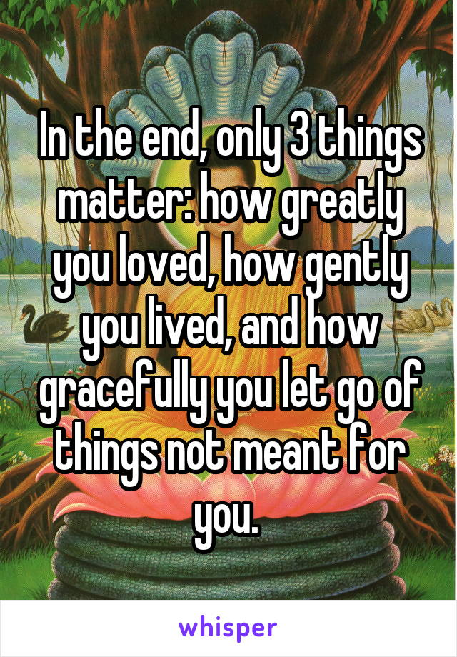 In the end, only 3 things matter: how greatly you loved, how gently you lived, and how gracefully you let go of things not meant for you.