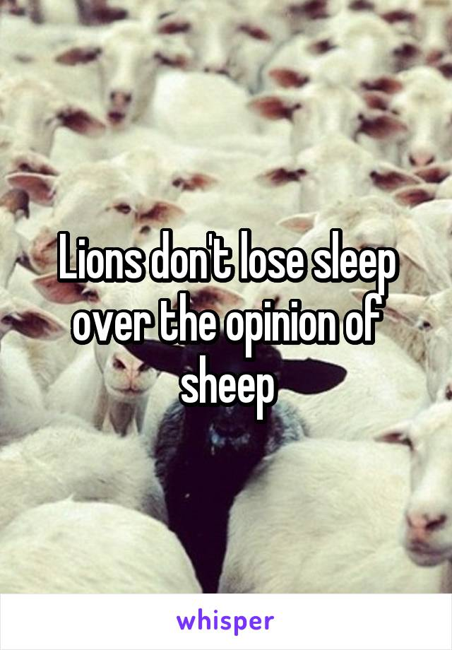 Lions don't lose sleep over the opinion of sheep