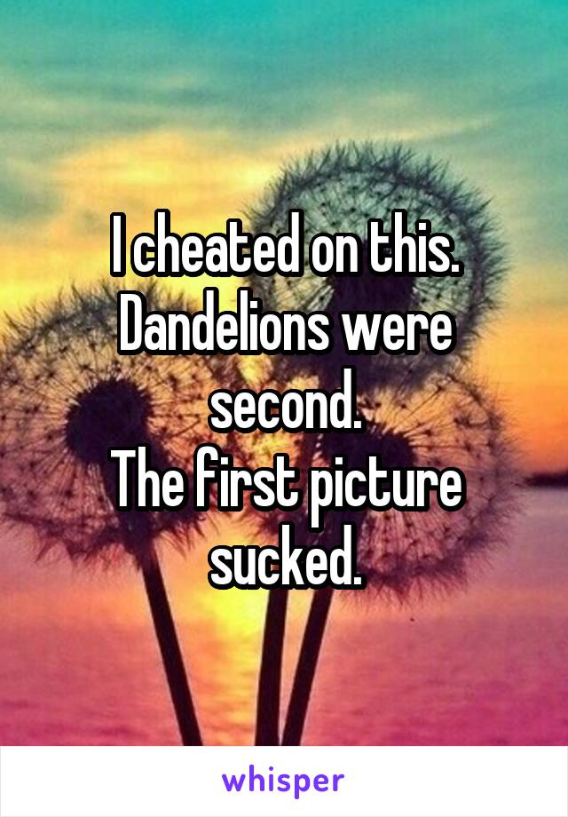 I cheated on this. Dandelions were second. The first picture sucked.